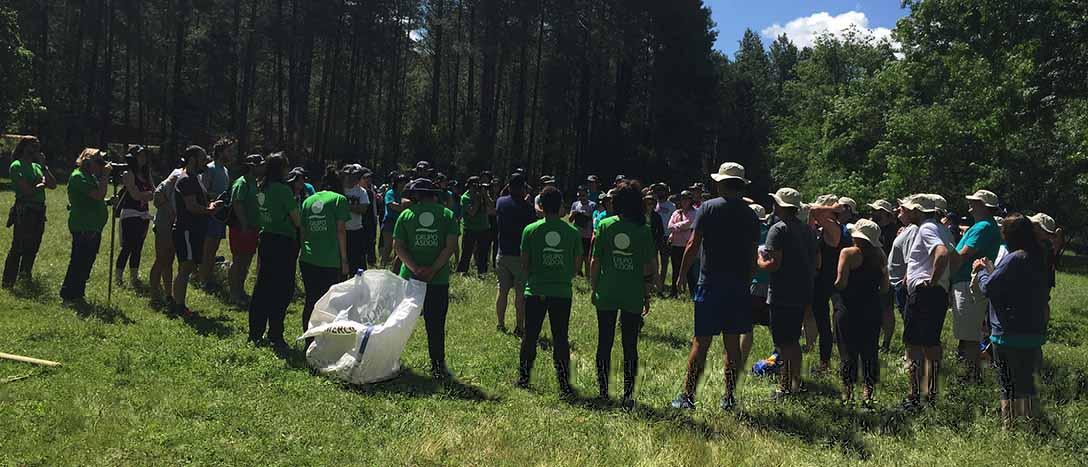 Plantilla y equipo humano para organización eventos, Asdon Eventos